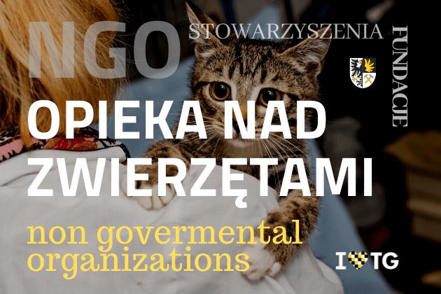 Opieka nad bezdomnymi zwierzętami w Tarnowskich Górach