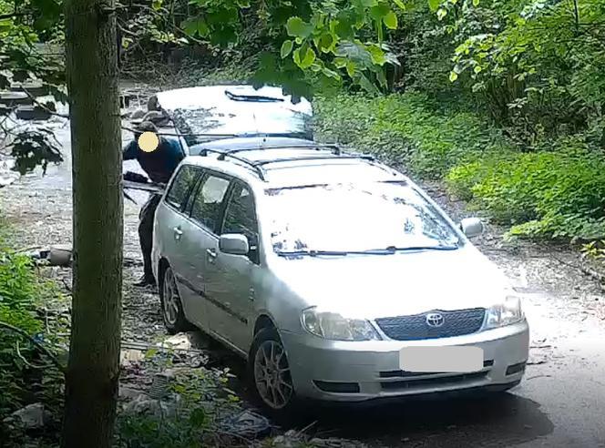 Katowice: Fotopułapka złapała mężczyznę